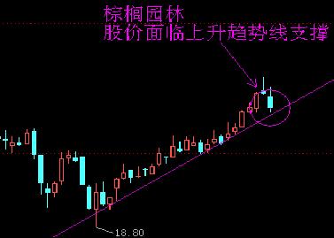 棕榈园林K线图 和讯股票制图-盘前独家图解 2月29日风险提示与交易策