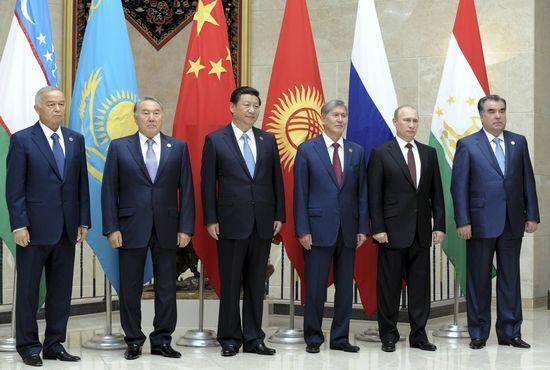 习近平领导下的中国外交2014年回顾-习近平领导下的中国外交回顾图片