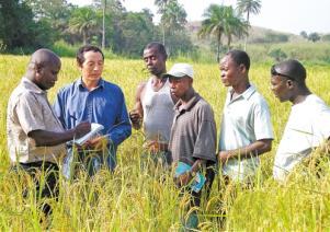 中国方案引领全球农业南南合作